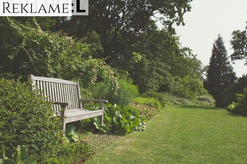 garden_15694499585288